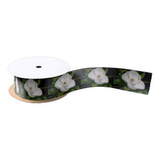 Lazo De Raso Cinta del flor de la magnolia