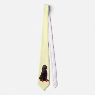 lazo del organismo de gordon corbata