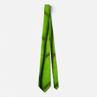 Lazo macro verde fresco de la hoja corbata