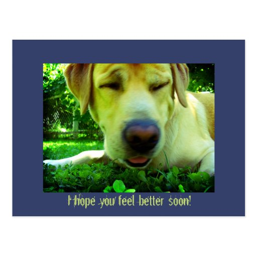 ¡Le espero sensación mejor pronto! Postales