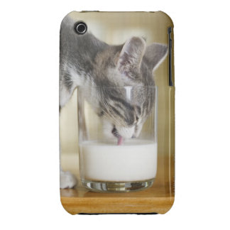 Leche de consumo del gatito del vidrio Case-Mate iPhone 3 cárcasas
