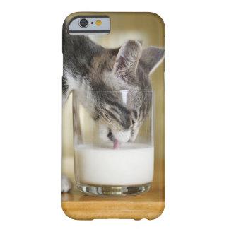Leche de consumo del gatito del vidrio funda de iPhone 6 barely there