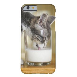 Leche de consumo del gatito del vidrio funda para iPhone 6 barely there