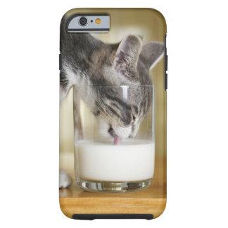 Leche de consumo del gatito del vidrio funda resistente iPhone 6
