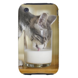 Leche de consumo del gatito del vidrio funda though para iPhone 3