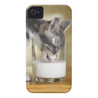 Leche de consumo del gatito del vidrio iPhone 4 Case-Mate protector