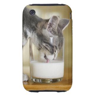 Leche de consumo del gatito del vidrio tough iPhone 3 carcasas