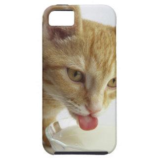 Leche de consumo del gato iPhone 5 Case-Mate cárcasas