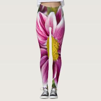 Leggings Margarita púrpura