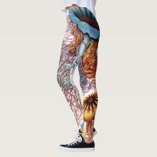 Leggings Medusas de Ernst Haeckel, Discomedusae del vintage