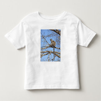 Lemur Anillo-atado (catta del Lemur) que se Camiseta De Bebé