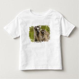 lemurs Anillo-atados (catta) del Lemur madre y Camiseta De Bebé