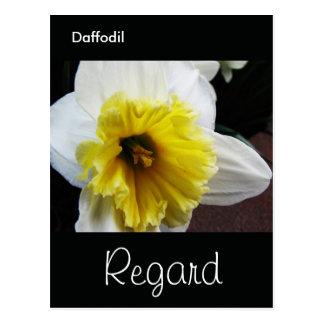 Lengua del respeto del narciso de las flores tarjeta postal