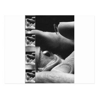 lentes y ojo de contacto tarjetas postales