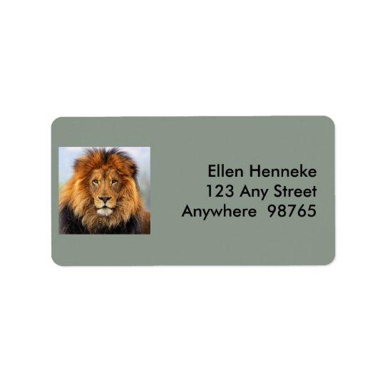 León africano 1 etiquetas de dirección