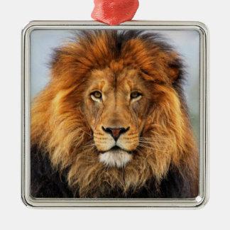 León africano adornos