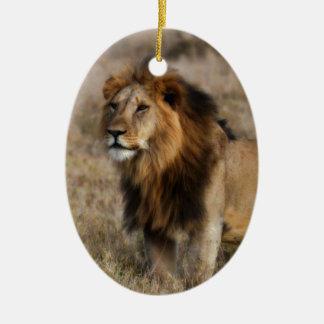 León africano en hierba adorno ovalado de cerámica