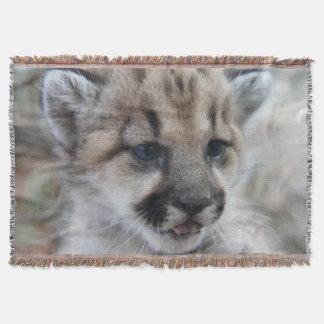 León Cub de montaña Manta