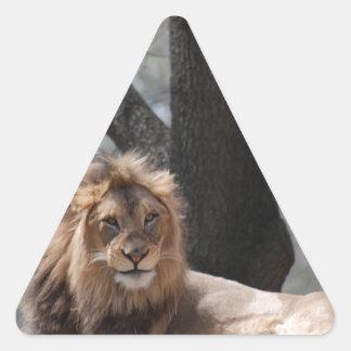 León de relajación calcomanía triangulo personalizadas