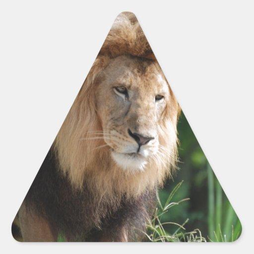 León de vagabundeo calcomania de trianguladas