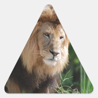 León de vagabundeo pegatina triangular