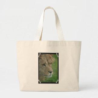 León joven bolsas