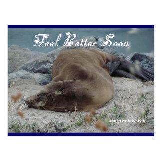 León marino - sensación mejor pronto - postal