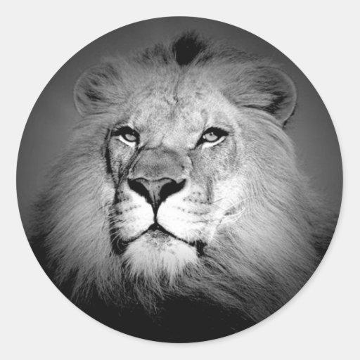 León negro y blanco etiqueta redonda