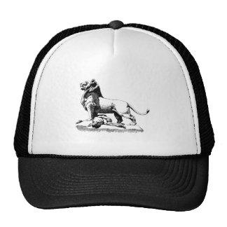 León orgulloso gorras de camionero