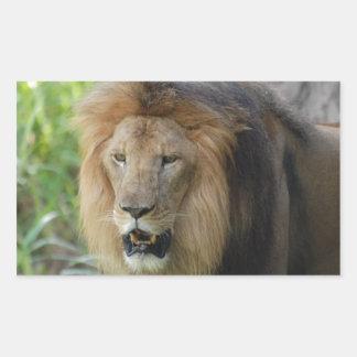 León orgulloso rectangular altavoz