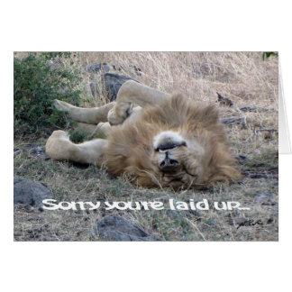 """León """"puesto encima"""" de la tarjeta (Masai Mara)"""