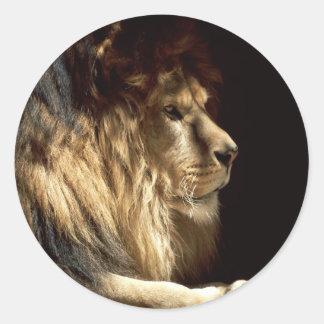 León - rey de la selva pegatina redonda