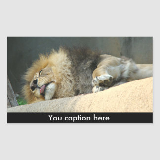 León soñoliento que pega hacia fuera al pegatina