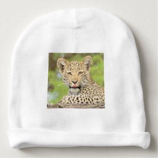 Leopardo Cub con una gorrita tejida de la actitud Gorrito Para Bebe