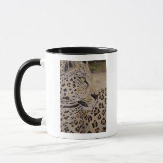 leopardo de la taza