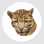 Leopardo nublado etiquetas redondas