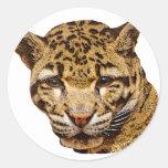Leopardo nublado pegatina redonda