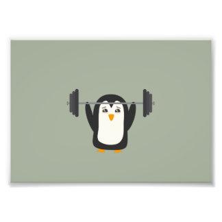 Levantamiento de pesas del pingüino arte con fotos