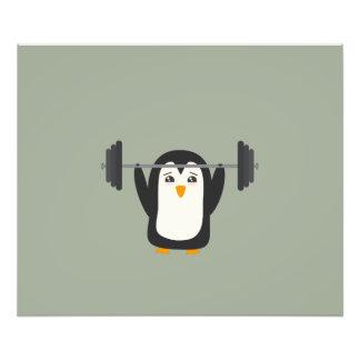Levantamiento de pesas del pingüino arte fotografico