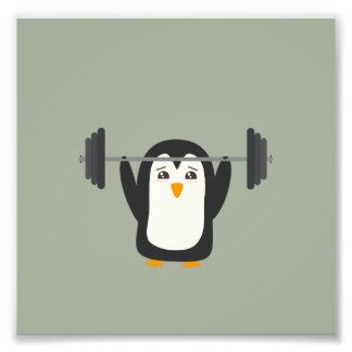 Levantamiento de pesas del pingüino foto