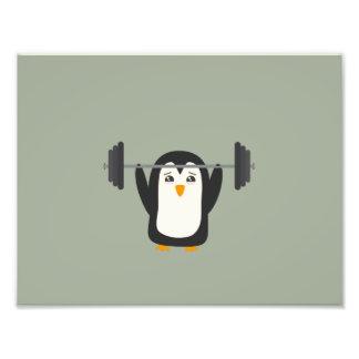 Levantamiento de pesas del pingüino fotografía