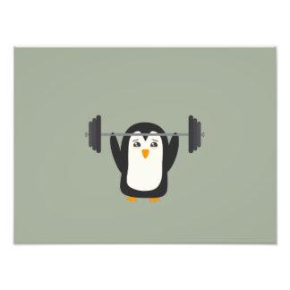 Levantamiento de pesas del pingüino fotografia