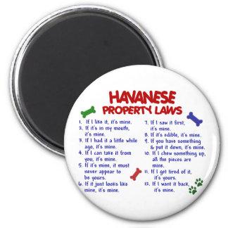Leyes 2 de la propiedad de HAVANESE Imán Redondo 5 Cm