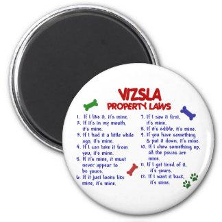 Leyes 2 de la propiedad de VIZSLA Imán Redondo 5 Cm