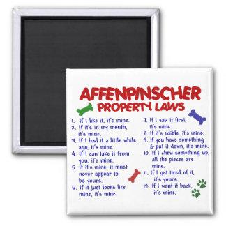 Leyes 2 de la propiedad del AFFENPINSCHER Imán Cuadrado