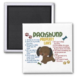 Leyes 4 de la propiedad del Dachshund Imán Cuadrado