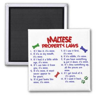 Leyes MALTESAS 2 de la propiedad Imán Cuadrado