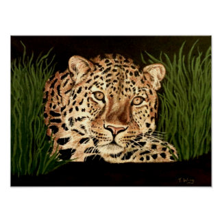 Liam el leopardo póster