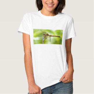 Libélula 1 camisetas