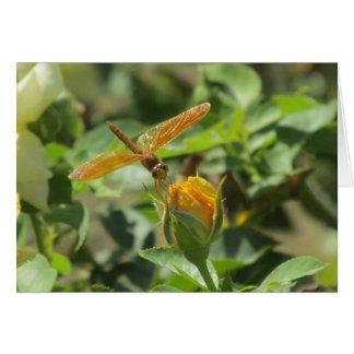 Libélula anaranjada en capullo de rosa amarillo tarjeta pequeña